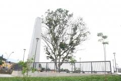 Obelisco-8
