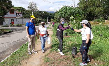 En alianza con nuestras comunidades y las alcaldías, el AMB impulsa la siembra de centenares de árboles para consolidar el corredor biótico y ecológico de Bucaramanga y el área metropolitana