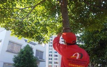 El AMB utilizará una nueva señalética para 52 mil 749 árboles que fueron caracterizados, censados y geo-referenciados por la Entidad en el año 2015