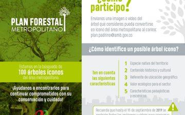 Buscamos 100 árboles icónicos y representativos del área metropolitana de Bucaramanga. Toda la comunidad nos puede ayudar a identificarlos